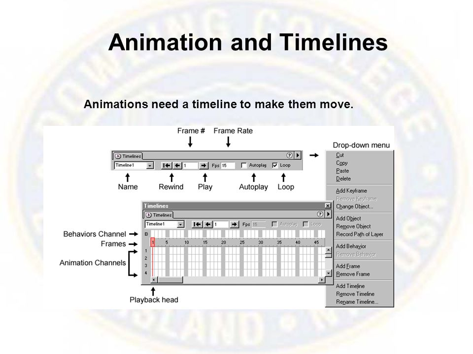 Animation and Timelines Animations need a timeline to make them move.