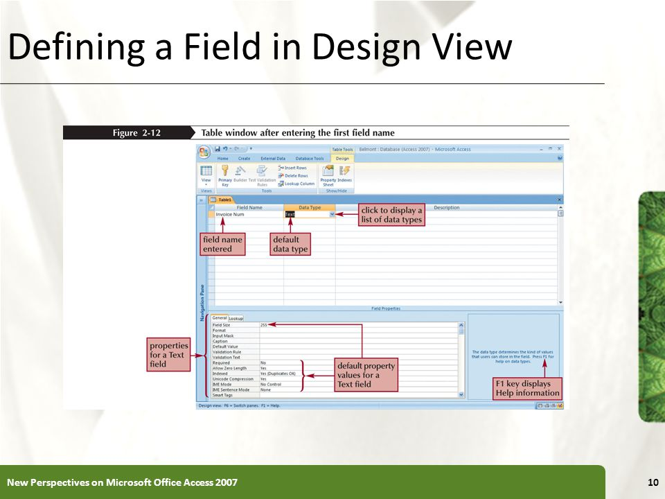 XP Defining a Field in Design View New Perspectives on Microsoft Office Access