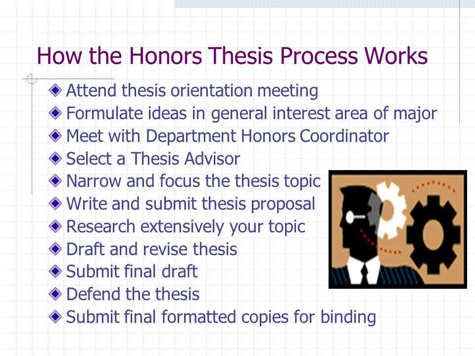 Honours Thesis
