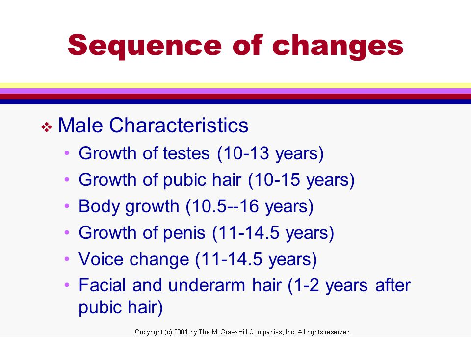 Sequence of changes v Male Characteristics Growth of testes (10-13 years) Growth of pubic hair (10-15 years) Body growth ( years) Growth of penis ( years) Voice change ( years) Facial and underarm hair (1-2 years after pubic hair)