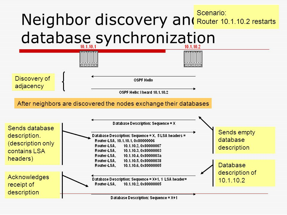 Neighbor discovery and database synchronization Sends empty database description Scenario: Router restarts Discovery of adjacency Sends database description.