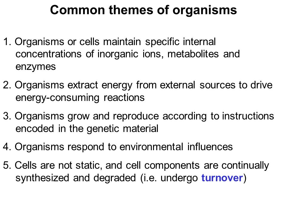Prentice Hall c2002Chapter 103 Common themes of organisms 1.