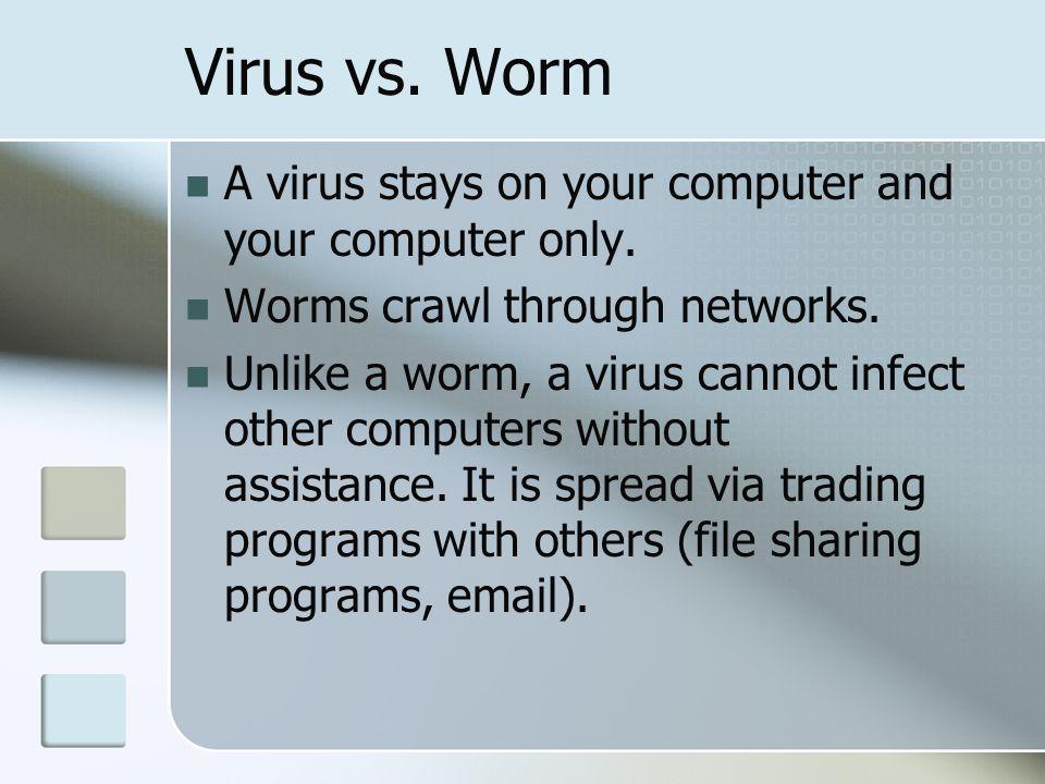 computer virus vs worm Basic Computer Maintenance Chatham University Information Technology ...