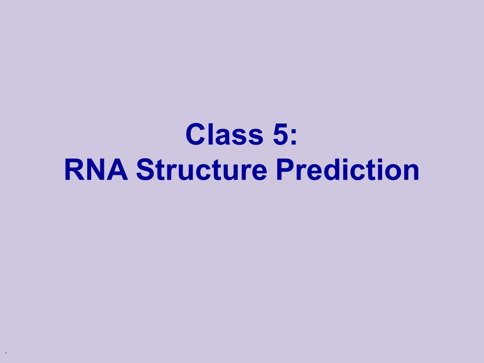 mrna structure