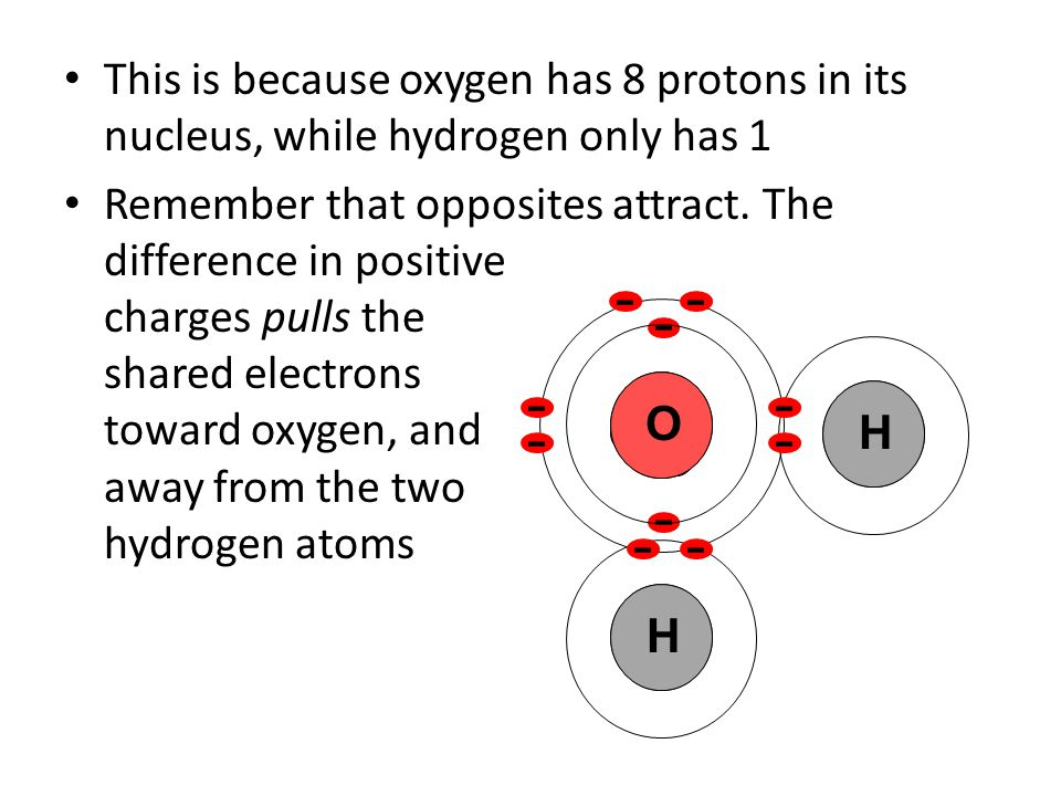 This is because oxygen has 8 protons in its nucleus, while hydrogen only has 1 Remember that opposites attract.