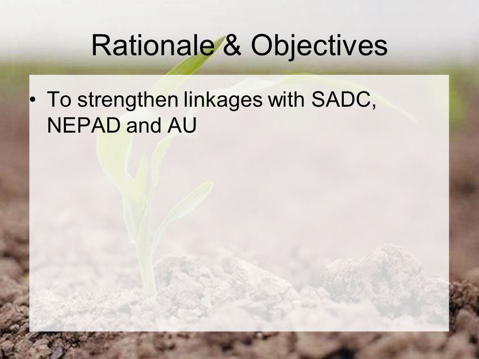 Rationale & Objectives To strengthen linkages with SADC, NEPAD and AU
