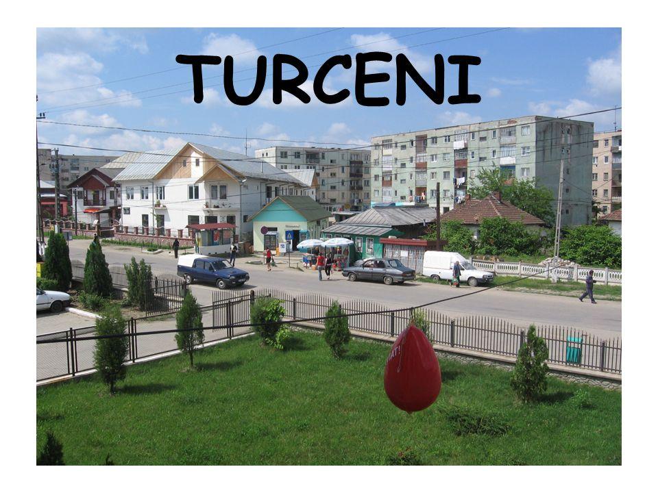 turceni power plant
