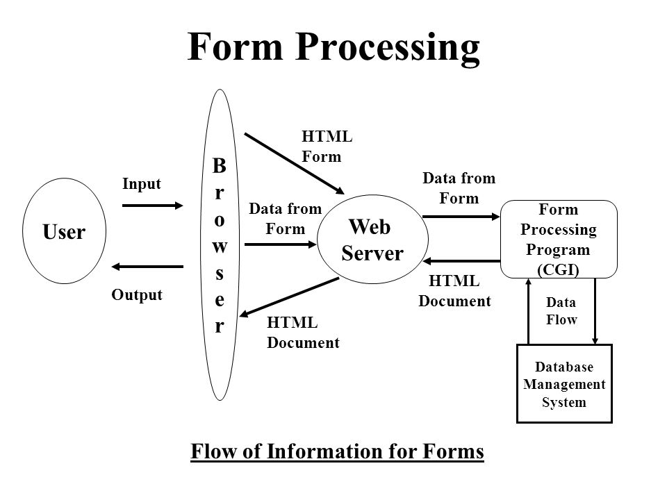 """Presentation """"USER INTERACTIONS: FORMS. Form Processing User ..."""