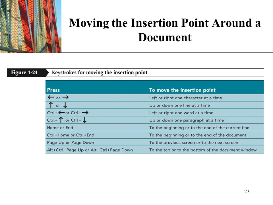 XP 25 Moving the Insertion Point Around a Document