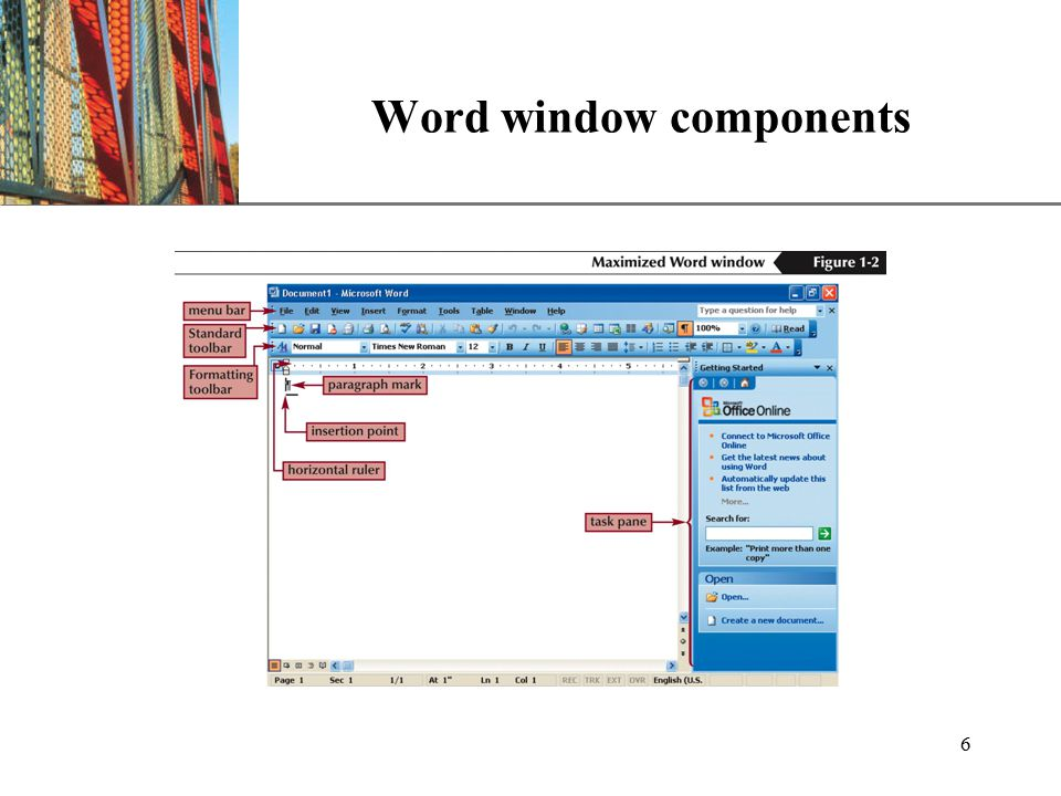 XP 6 Word window components