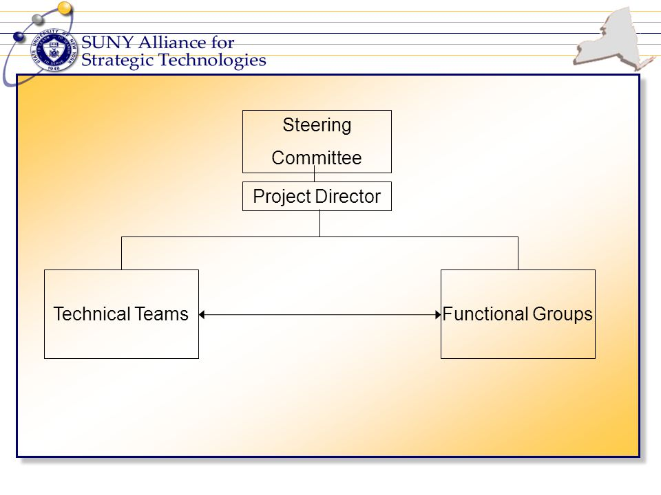 Steering Committee Project Director Technical TeamsFunctional Groups