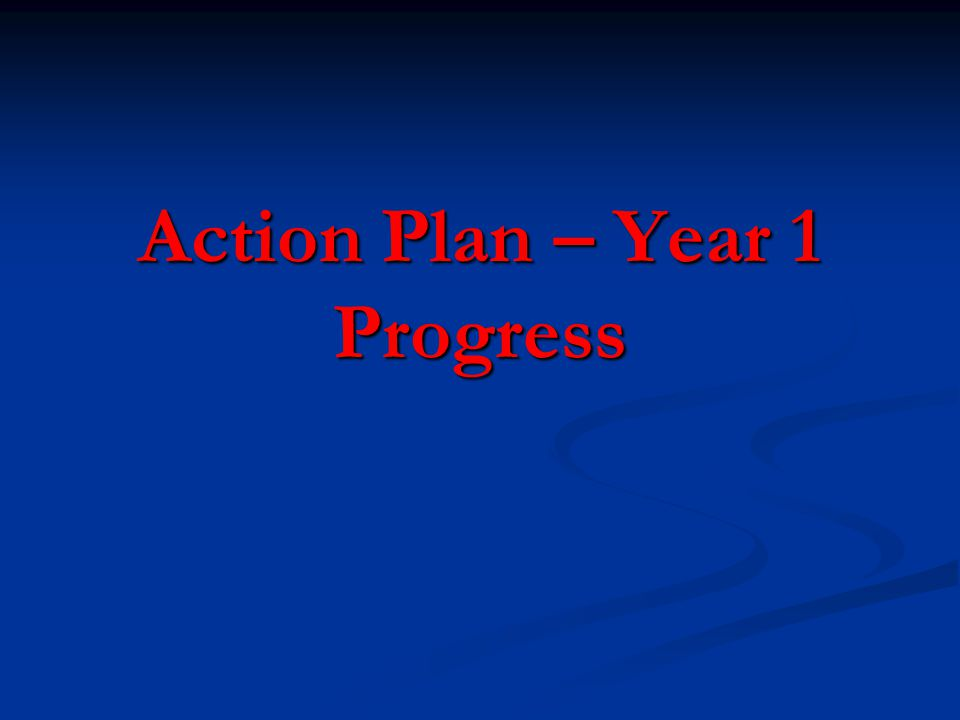 Action Plan – Year 1 Progress