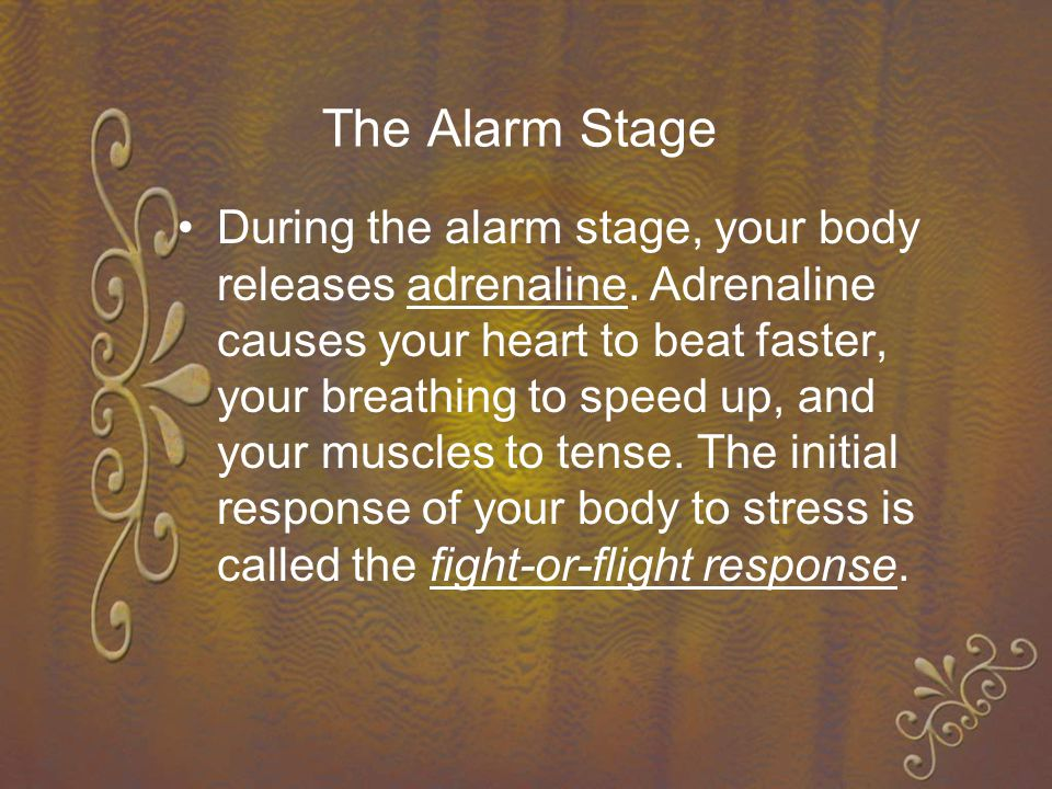 The Alarm Stage During the alarm stage, your body releases adrenaline.