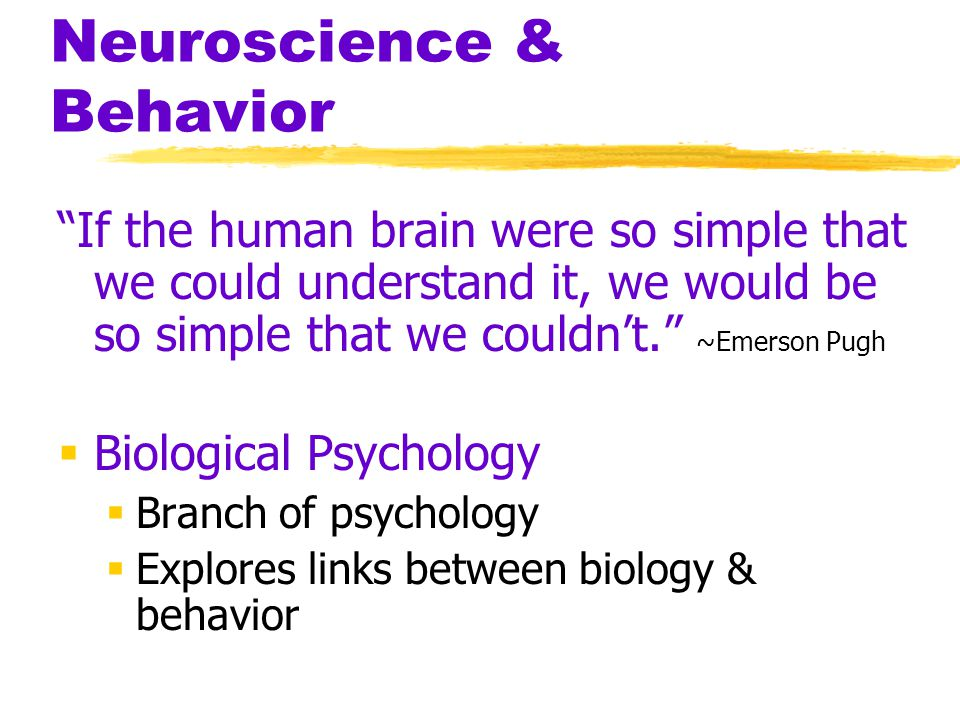 Neuroscience & Behavior If the human brain were so simple that we could understand it, we would be so simple that we couldn't. ~Emerson Pugh  Biological Psychology  Branch of psychology  Explores links between biology & behavior