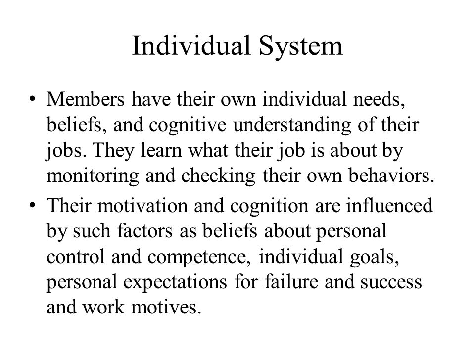 Individual System Members have their own individual needs, beliefs, and cognitive understanding of their jobs.