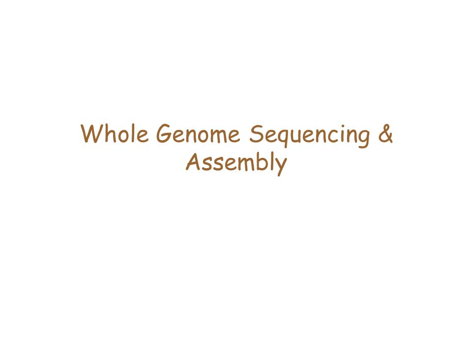 Whole Genome Sequencing & Assembly