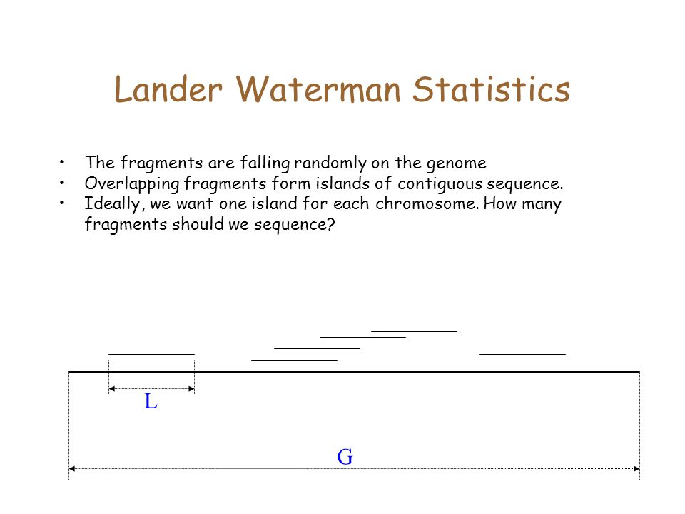 Lander Waterman Statistics G L The fragments are falling randomly on the genome Overlapping fragments form islands of contiguous sequence.