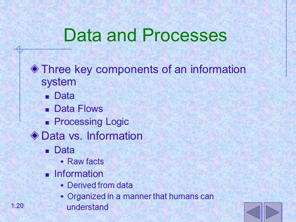 Data and Processes Three key components of an information system Data Data Flows Processing Logic Data vs.