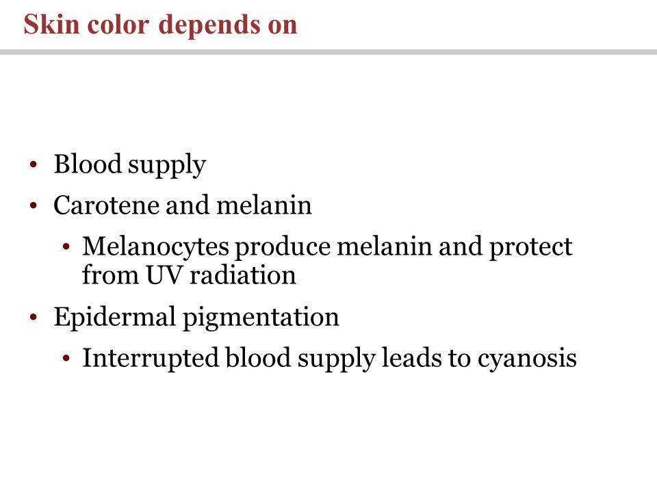 Blood supply Carotene and melanin Melanocytes produce melanin and protect from UV radiation Epidermal pigmentation Interrupted blood supply leads to cyanosis Skin color depends on