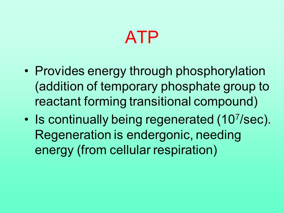 ATP Provides energy through phosphorylation (addition of temporary phosphate group to reactant forming transitional compound) Is continually being regenerated (10 7 /sec).