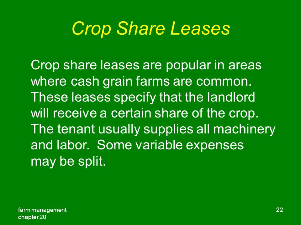farm management chapter Crop Share Leases Crop share leases are popular in areas where cash grain farms are common.