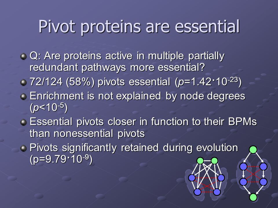 Pivot proteins are essential Q: Are proteins active in multiple partially redundant pathways more essential.