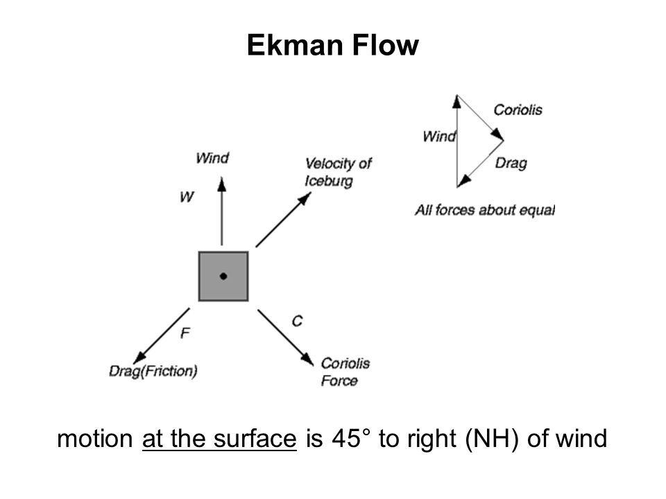 Ekman Flow motion at the surface is 45° to right (NH) of wind