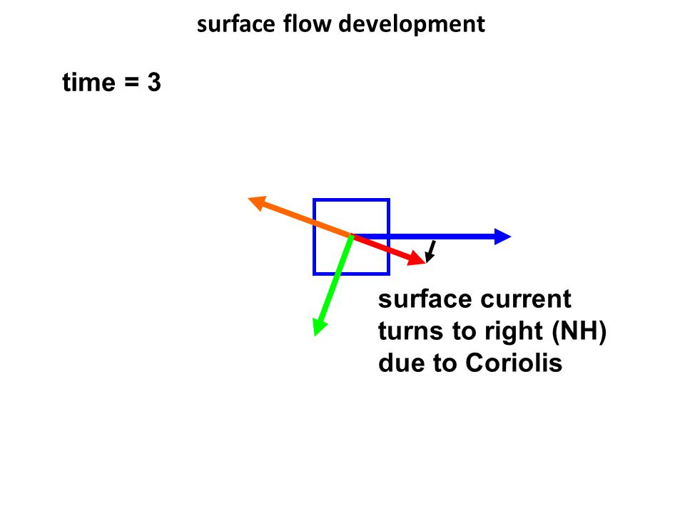 surface flow development time = 3 surface current turns to right (NH) due to Coriolis