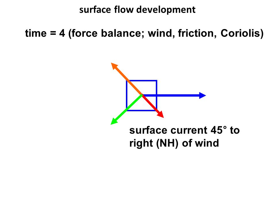 surface flow development time = 4 (force balance; wind, friction, Coriolis) surface current 45° to right (NH) of wind