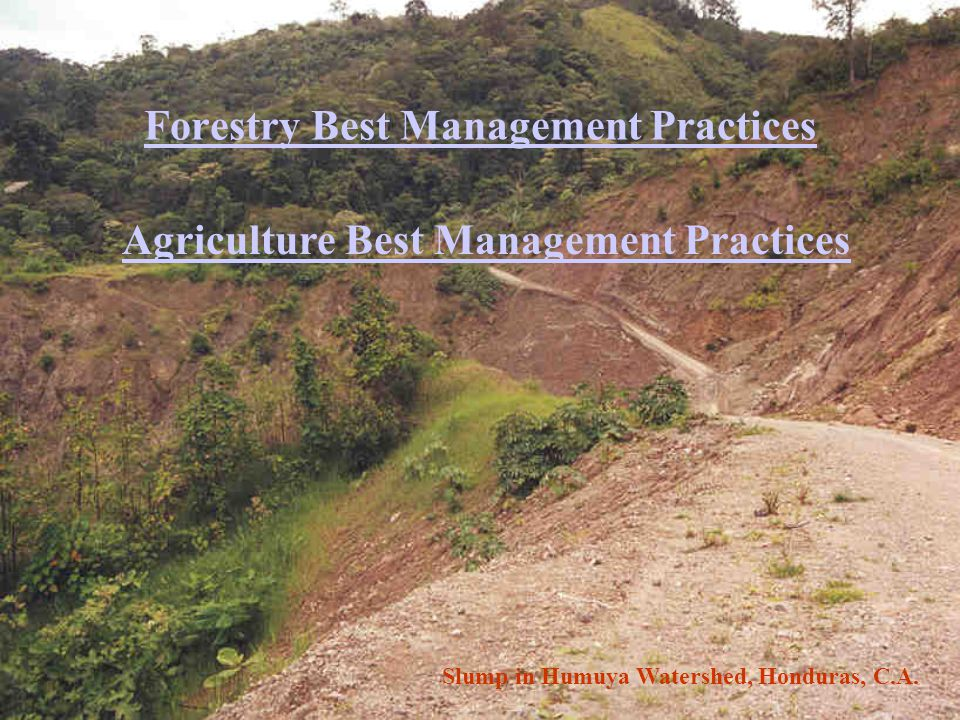 Forestry Best Management Practices Agriculture Best Management Practices Slump in Humuya Watershed, Honduras, C.A.