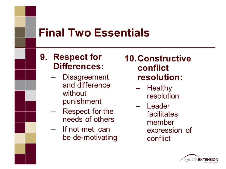 Final Two Essentials 9.Respect for Differences: –Disagreement and difference without punishment –Respect for the needs of others –If not met, can be d