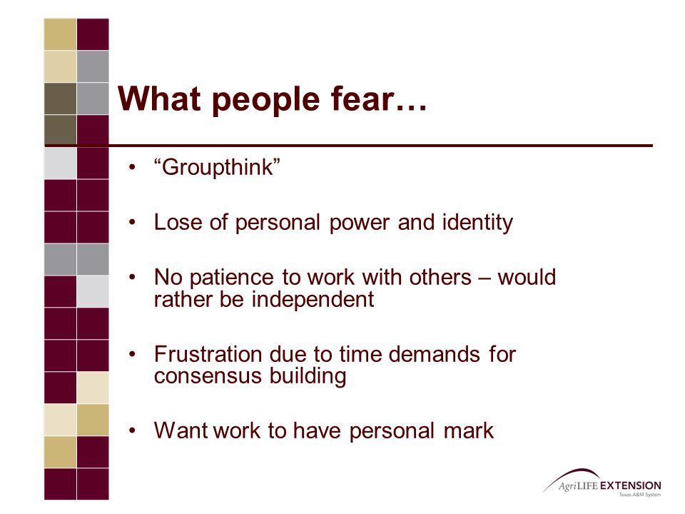 "What people fear… ""Groupthink"" Lose of personal power and identity No patience to work with others – would rather be independent Frustration due to ti"