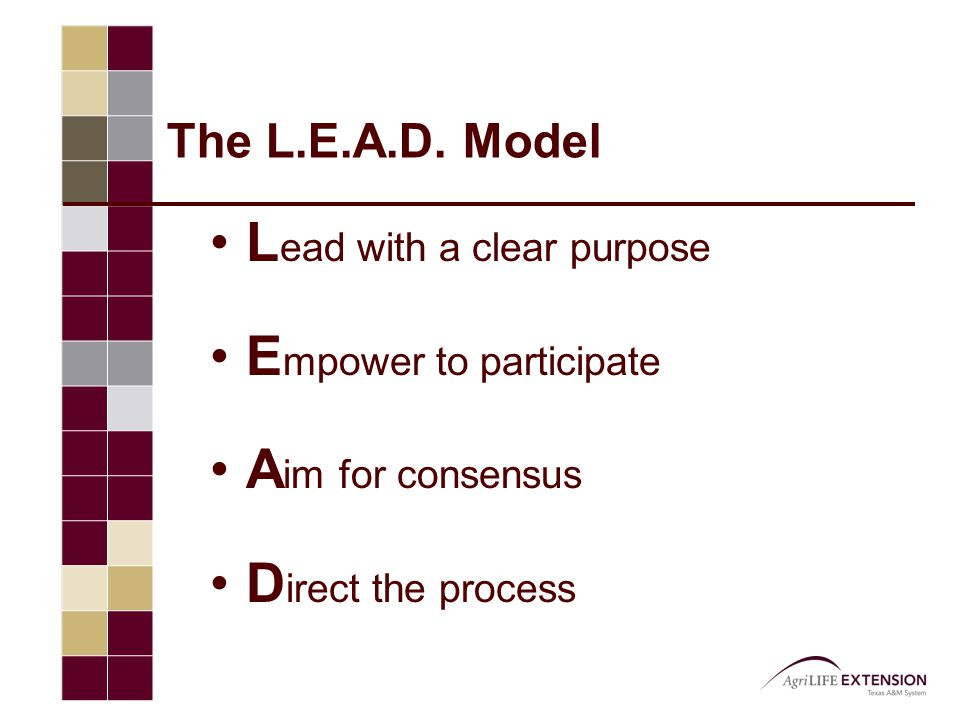 The L.E.A.D. Model L ead with a clear purpose E mpower to participate A im for consensus D irect the process