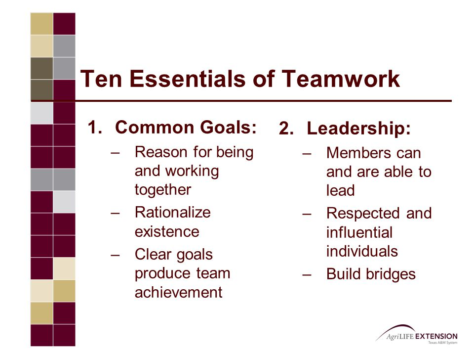 Ten Essentials of Teamwork 1.Common Goals: –Reason for being and working together –Rationalize existence –Clear goals produce team achievement 2.Leade