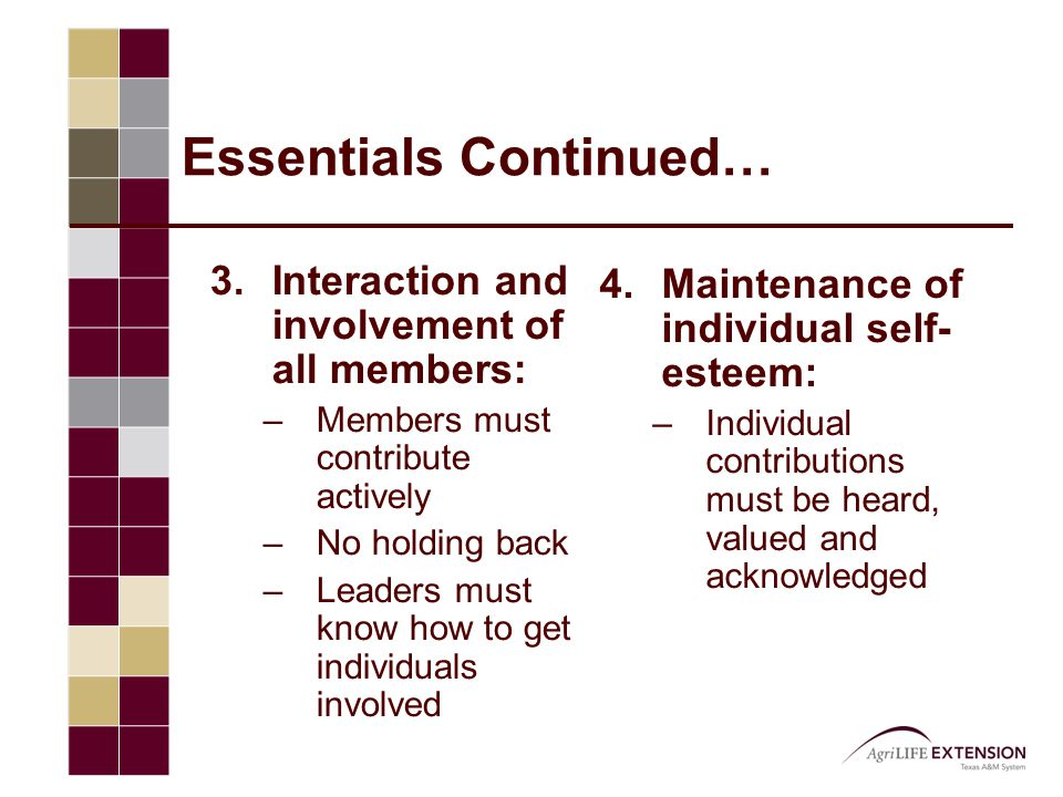 Essentials Continued… 3.Interaction and involvement of all members: –Members must contribute actively –No holding back –Leaders must know how to get i
