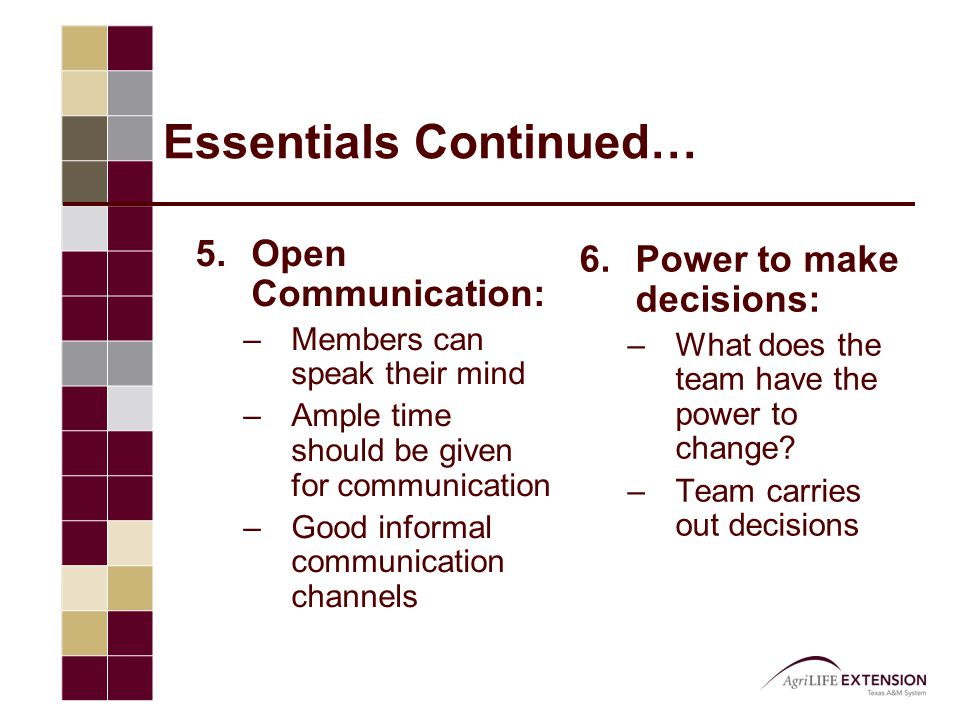Essentials Continued… 5.Open Communication: –Members can speak their mind –Ample time should be given for communication –Good informal communication c