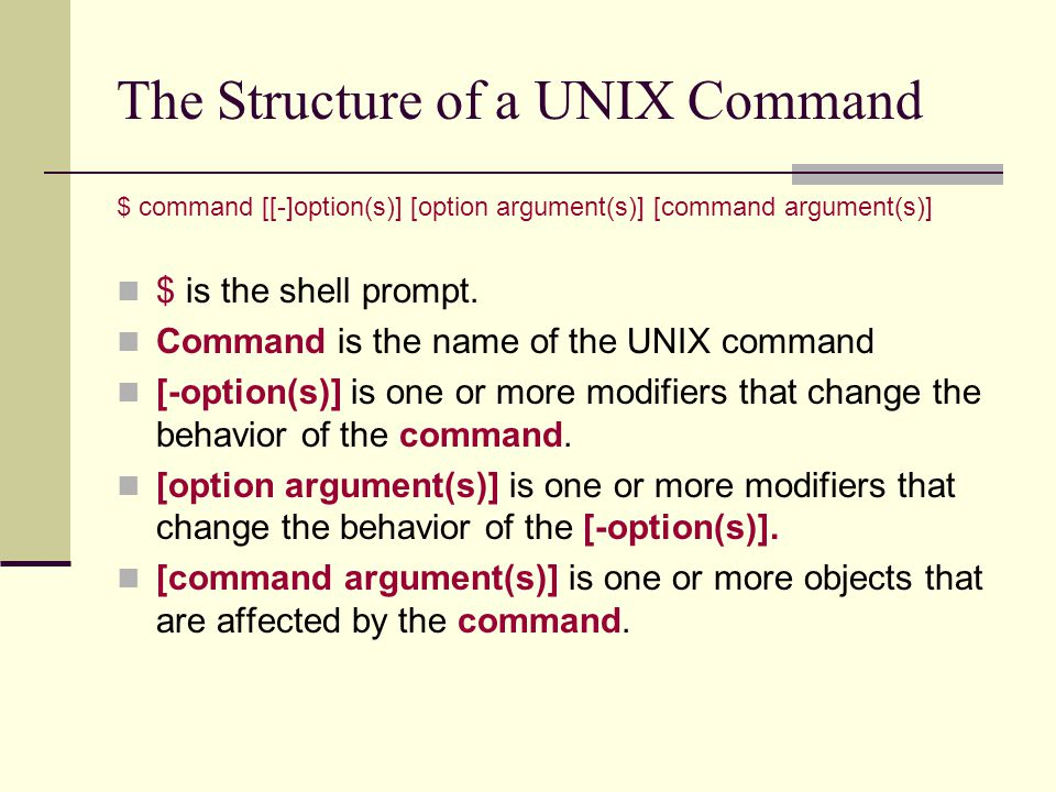 The Structure of a UNIX Command $ command [[-]option(s)] [option argument(s)] [command argument(s)] $ is the shell prompt.