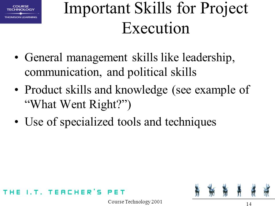 Course Technology Important Skills for Project Execution General management skills like leadership, communication, and political skills Product skills and knowledge (see example of What Went Right ) Use of specialized tools and techniques