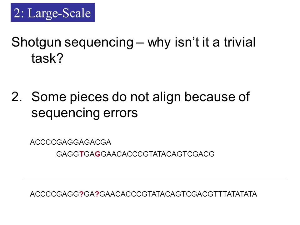 Shotgun sequencing – why isn't it a trivial task.