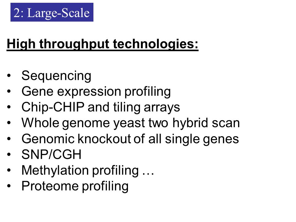 2: Large-Scale High throughput technologies: Sequencing Gene expression profiling Chip-CHIP and tiling arrays Whole genome yeast two hybrid scan Genomic knockout of all single genes SNP/CGH Methylation profiling … Proteome profiling