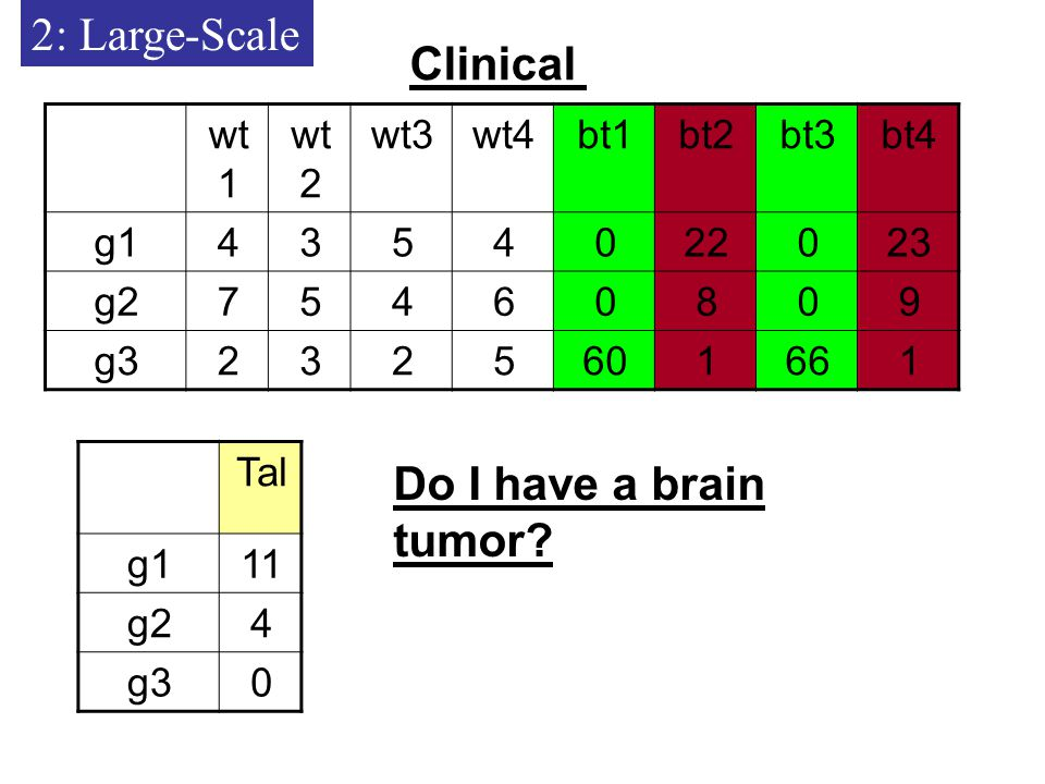 2: Large-Scale Clinical Tal 11g1 4g2 0g3 Do I have a brain tumor.