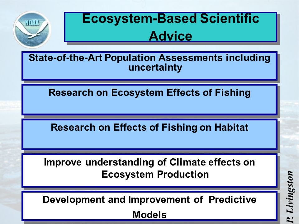 Ecosystem-Based Scientific Advice State-of-the-Art Population Assessments including uncertainty Research on Effects of Fishing on Habitat Improve understanding of Climate effects on Ecosystem Production Development and Improvement of Predictive Models Research on Ecosystem Effects of Fishing P.