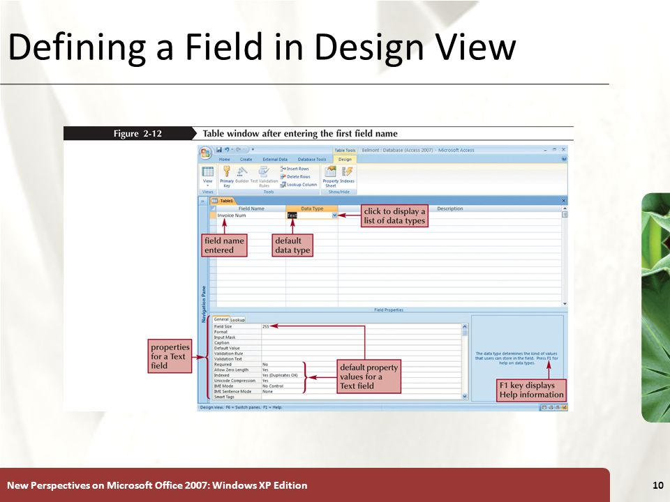 XP New Perspectives on Microsoft Office 2007: Windows XP Edition10 Defining a Field in Design View
