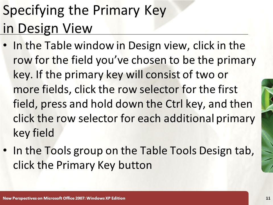 XP New Perspectives on Microsoft Office 2007: Windows XP Edition11 Specifying the Primary Key in Design View In the Table window in Design view, click in the row for the field you've chosen to be the primary key.