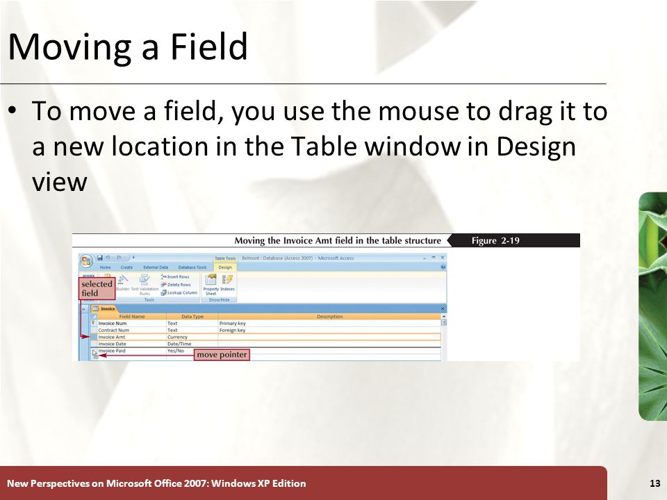 XP New Perspectives on Microsoft Office 2007: Windows XP Edition13 Moving a Field To move a field, you use the mouse to drag it to a new location in the Table window in Design view