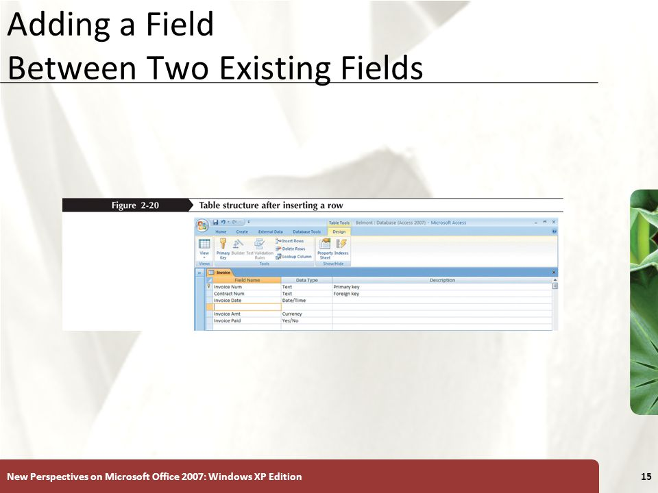 XP New Perspectives on Microsoft Office 2007: Windows XP Edition15 Adding a Field Between Two Existing Fields