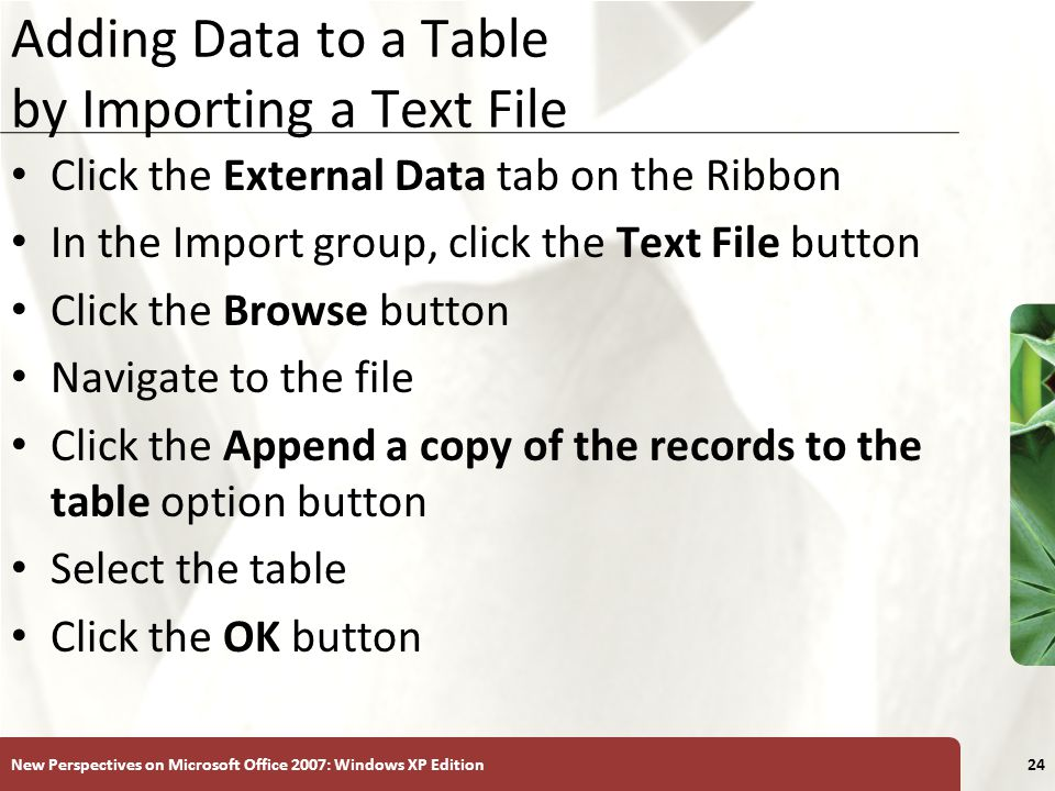 XP New Perspectives on Microsoft Office 2007: Windows XP Edition24 Adding Data to a Table by Importing a Text File Click the External Data tab on the Ribbon In the Import group, click the Text File button Click the Browse button Navigate to the file Click the Append a copy of the records to the table option button Select the table Click the OK button