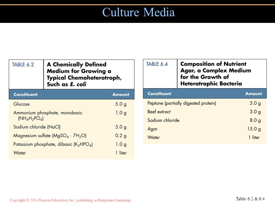 Copyright © 2004 Pearson Education, Inc., publishing as Benjamin Cummings Culture Media Table 6.2 & 6.4