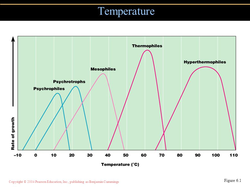 Copyright © 2004 Pearson Education, Inc., publishing as Benjamin Cummings Temperature Figure 6.1