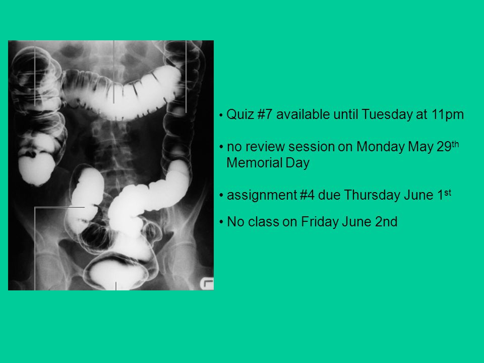 Quiz #7 available until Tuesday at 11pm no review session on Monday May 29 th Memorial Day assignment #4 due Thursday June 1 st No class on Friday June 2nd